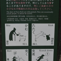 Interesting Signage at Nara