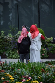 Singapore is a harmonious multicultural city