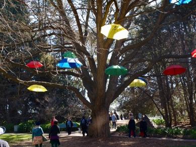 Walking through Floriade...a novel use for umbrellas