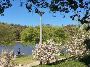 LAKE TUGGERANONG WALK IN EARLY/MID SPRING